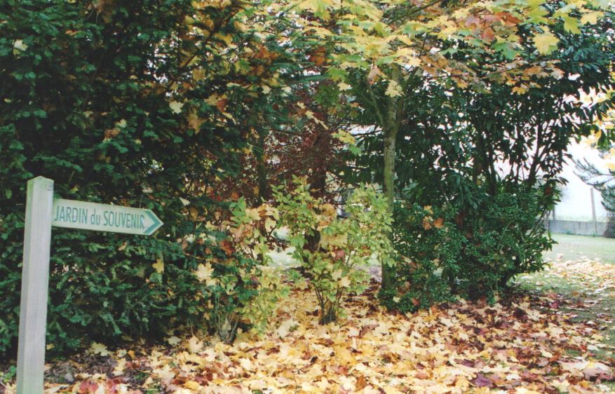 7 jardin souvenir 001