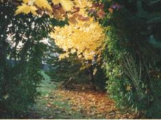 9 - jardin souvenir 2 001