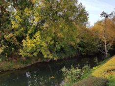 5-riviere